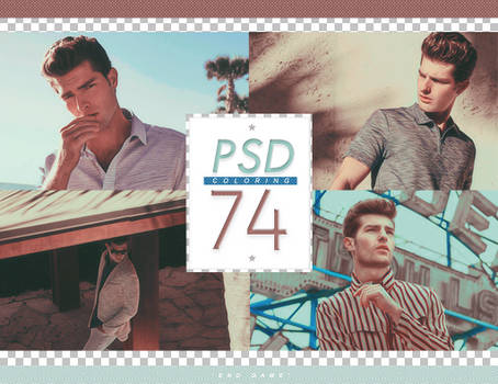PSD # 74 [End Game]