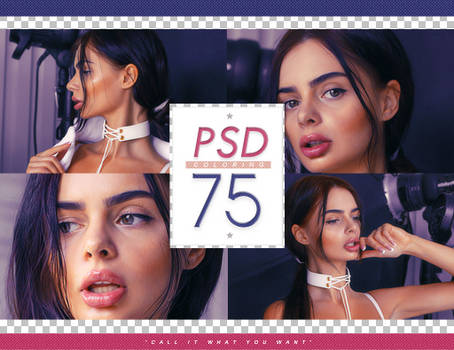 PSD # 75 [Call It What You Want]