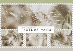 Paynetrain's Texture Pack [Up Til January] #19