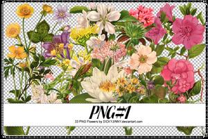 PNG#1. Flowers by SickyJinny