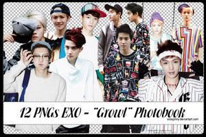 Pack 12 PNGs EXO by SickyJinny