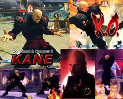 SF4 Mod Kane by cicakkia