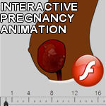 Interactive pregnant wolf
