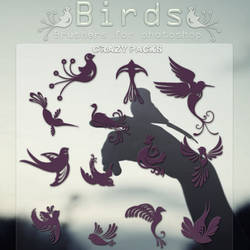 Birds  BRUSHERS  by CrazyPacks