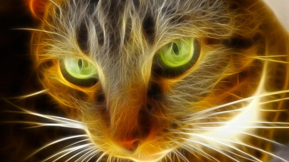 [Resim: gato_fractalioso_by_acg3fly-d4oz9oo.jpg]