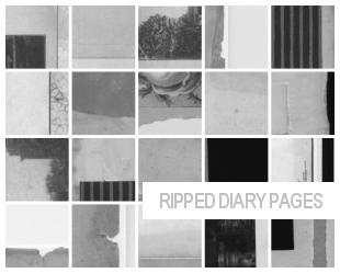 diary scrap brushes 100x100 by masterjinn