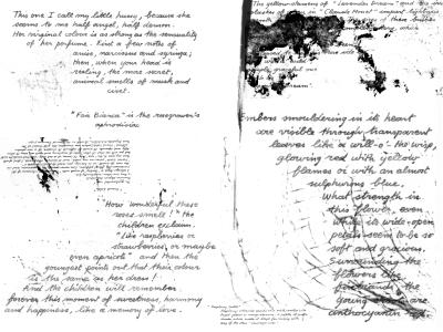 text brushe image pack by masterjinn