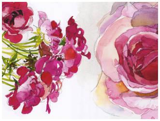 flower image pack by masterjinn