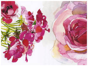 flower image pack