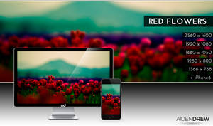 .: Red Flowers Wallpaper :.