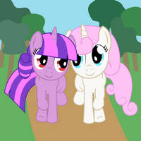 Compass and Twinkle by frezarion