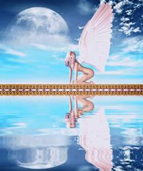 winged Reflection