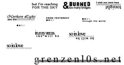 Icon Lyrics by Fischstaebchen