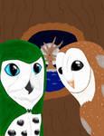 Lost tales of Ga'Hoole, Finale by Whisperer-of-Winds
