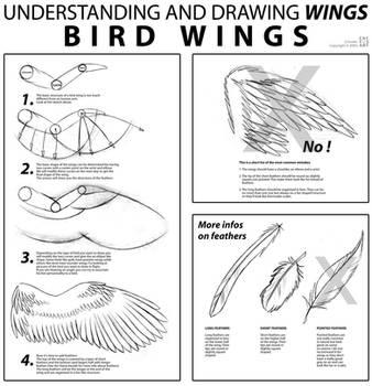 Bird Wings Tutorial by joanniegoulet
