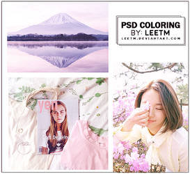 psd-coloring-#13 by LeeTM