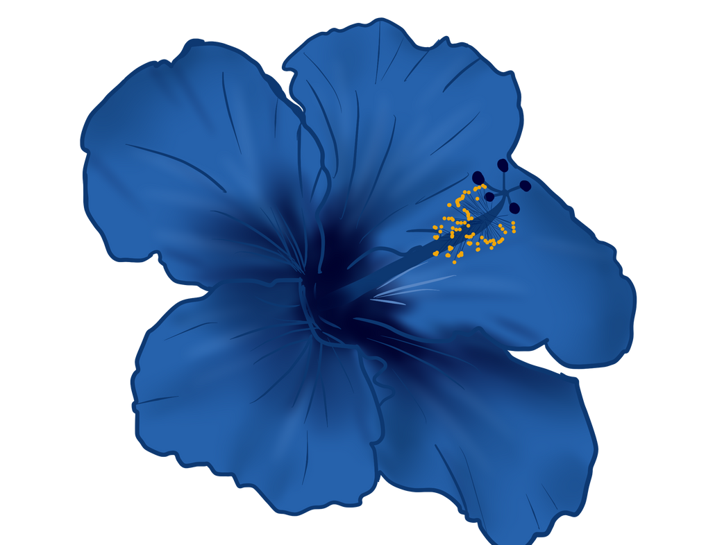 Hibiscus flower png by shadow ghost26 on deviantart hibiscus flower png by shadow ghost26 izmirmasajfo
