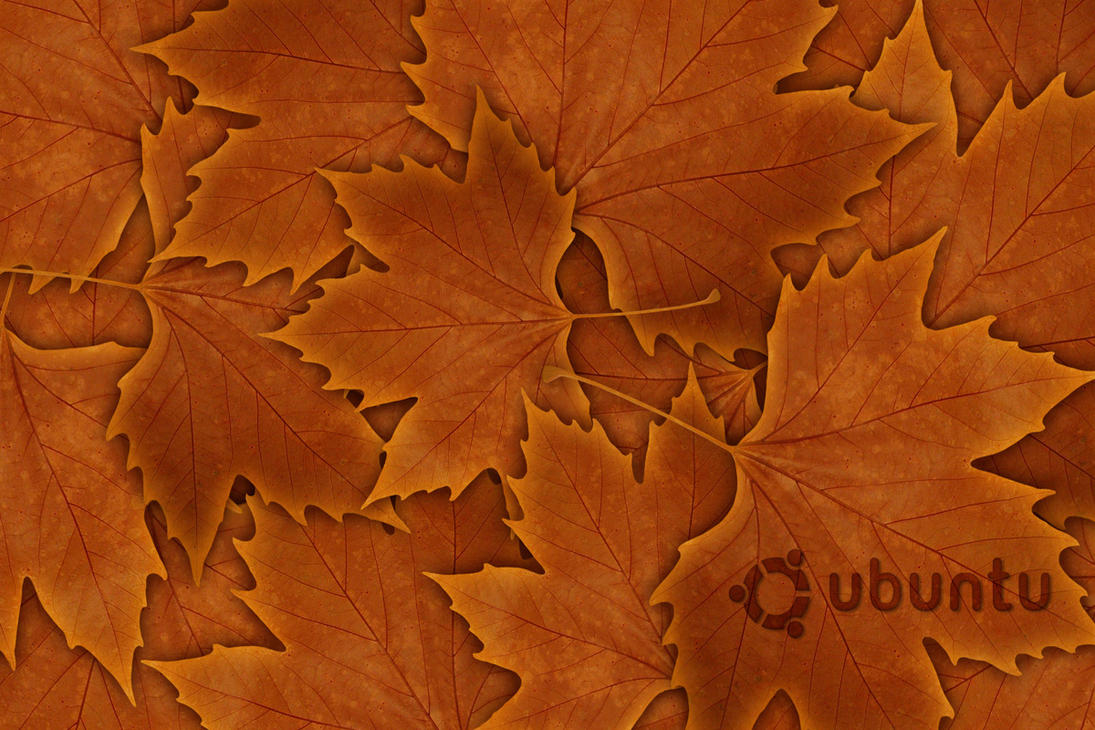 Ubuntu leaves by sizakor