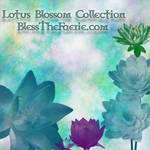 Lotus Blossom Brush Collection