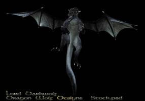 Black Dragon stock three by lorddarkwolf