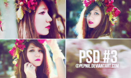 PSD#3 by PEPNIE