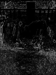 The Midnight Garden 2