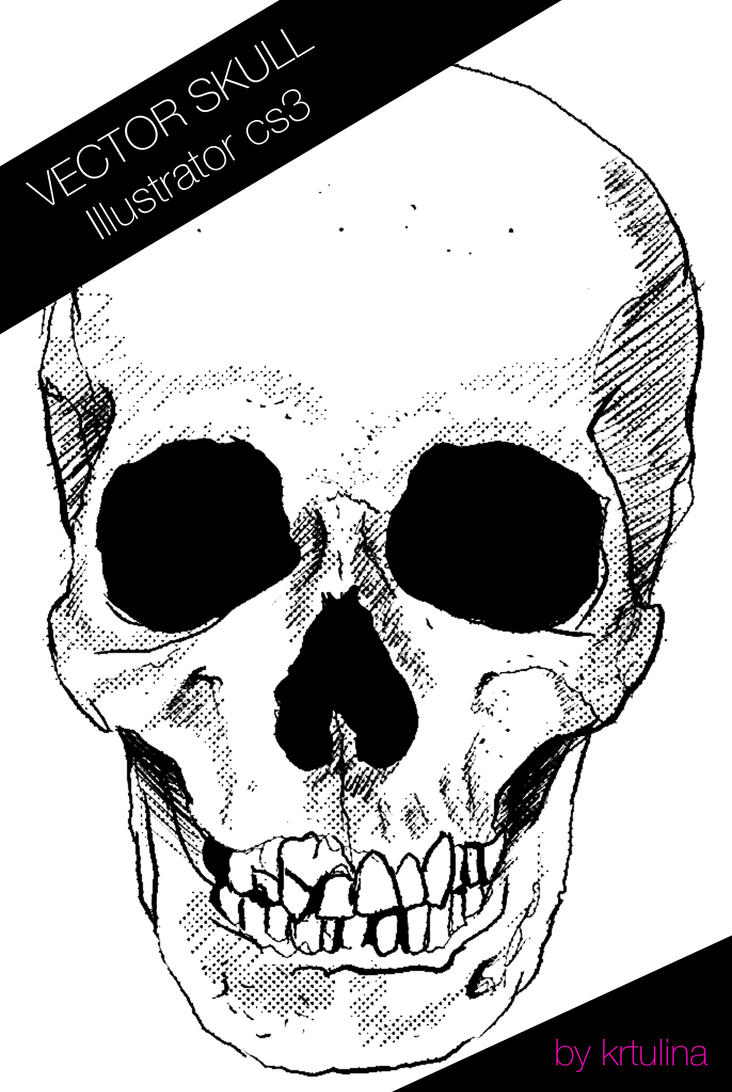 Another vector skull by krtulina