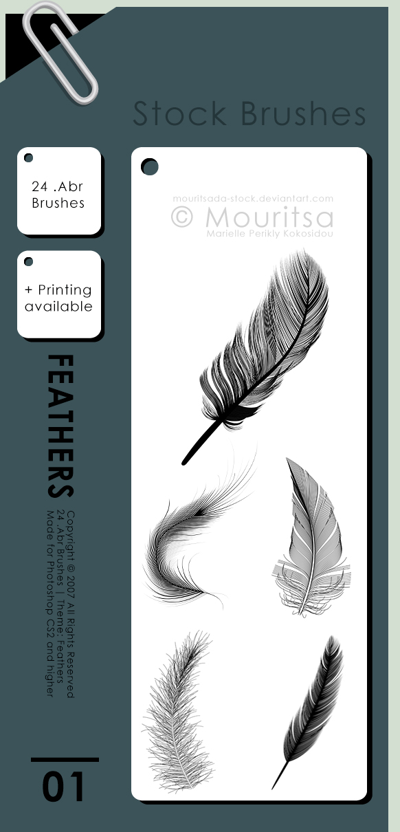 Brush Pack - Feathers