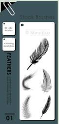 Brush Pack - Feathers by iMouritsa
