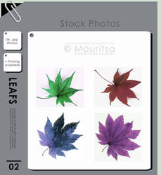 Photo Pack - Colorful Leafs