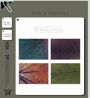 Texture - Vol 29