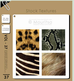 Texture Pack - Vol 37