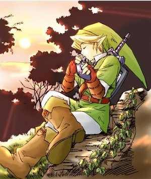 link  reader  elf hero   innkeeper  rogerdodger  deviantart