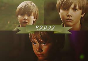 PSD #03 [Burden of the Beast]