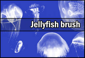 Jellyfish brush by Faeth-design