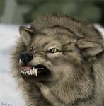 Tutorial - Wolf Painting