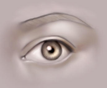 Drawing the human eye by jezebel