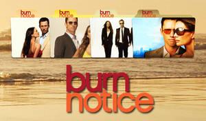 Burn Notice Folder Icon