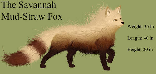 The Mud-Straw Savannah Fox by DeviantSidJV