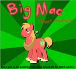 Big Macintosh Consultation