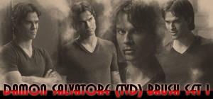 Damon Salvatore TVD Brush set 1