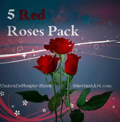 5 Red Roses Pack by UmbraDeNoapte-Stock