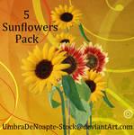 5 Sunflowers Pack