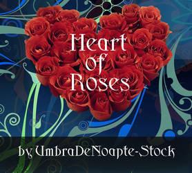 Heart Of Roses by UmbraDeNoapte-Stock