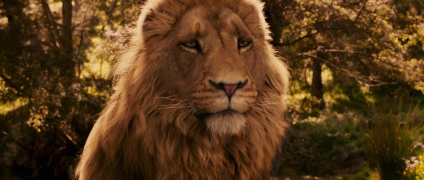 Aslan X Reader: From Sadness to Happiness by ImmortalUniverse on ... for Narnia Aslan Wallpaper  76uhy