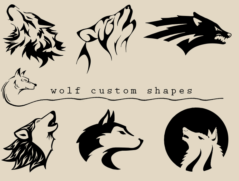 Wolf by anulubi