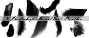 Mane+Tail Brushes