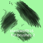 fur brushes2