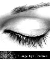 8 Large Eye Brushes. by gfxgurl