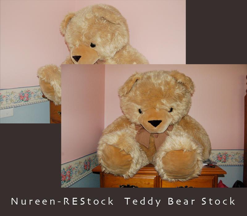 Teady Bear Stock by nureen-REStock
